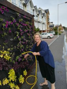 Margate Living Wall  with Raychel Mount